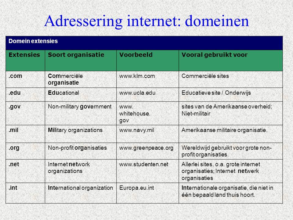 Adressering internet: domeinen
