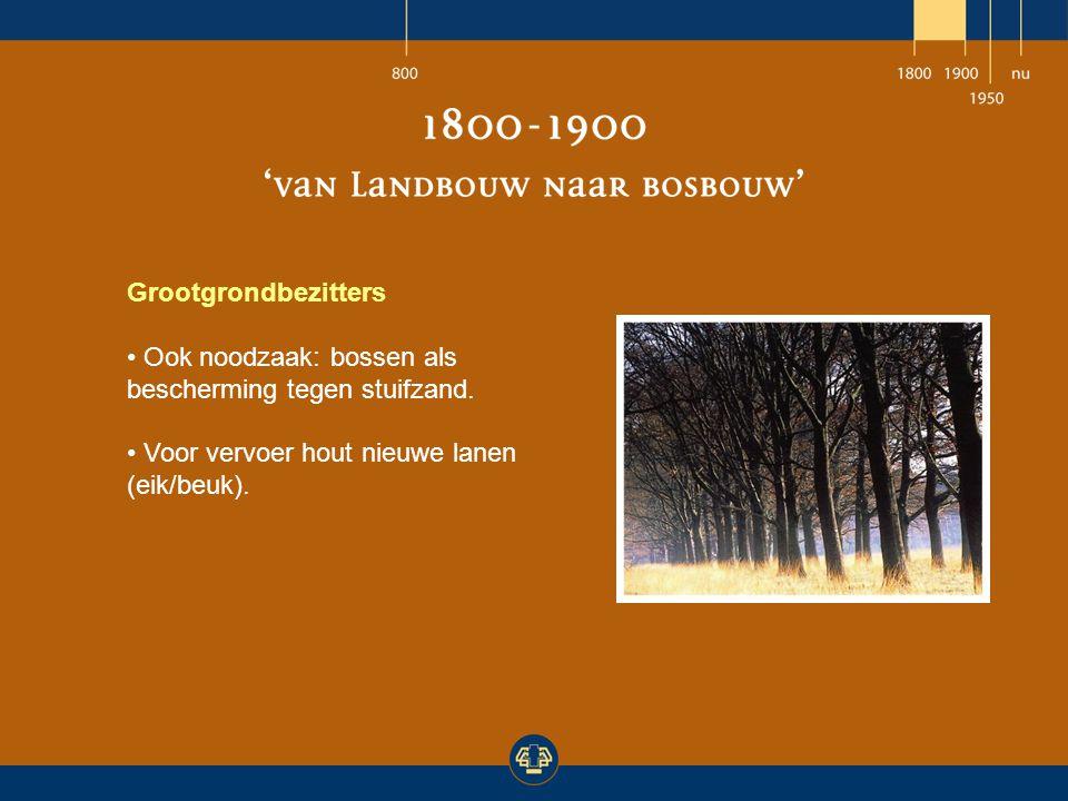 Grootgrondbezitters Ook noodzaak: bossen als bescherming tegen stuifzand.