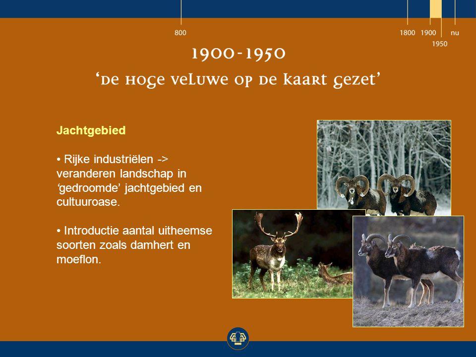 Jachtgebied Rijke industriëlen -> veranderen landschap in 'gedroomde' jachtgebied en cultuuroase.