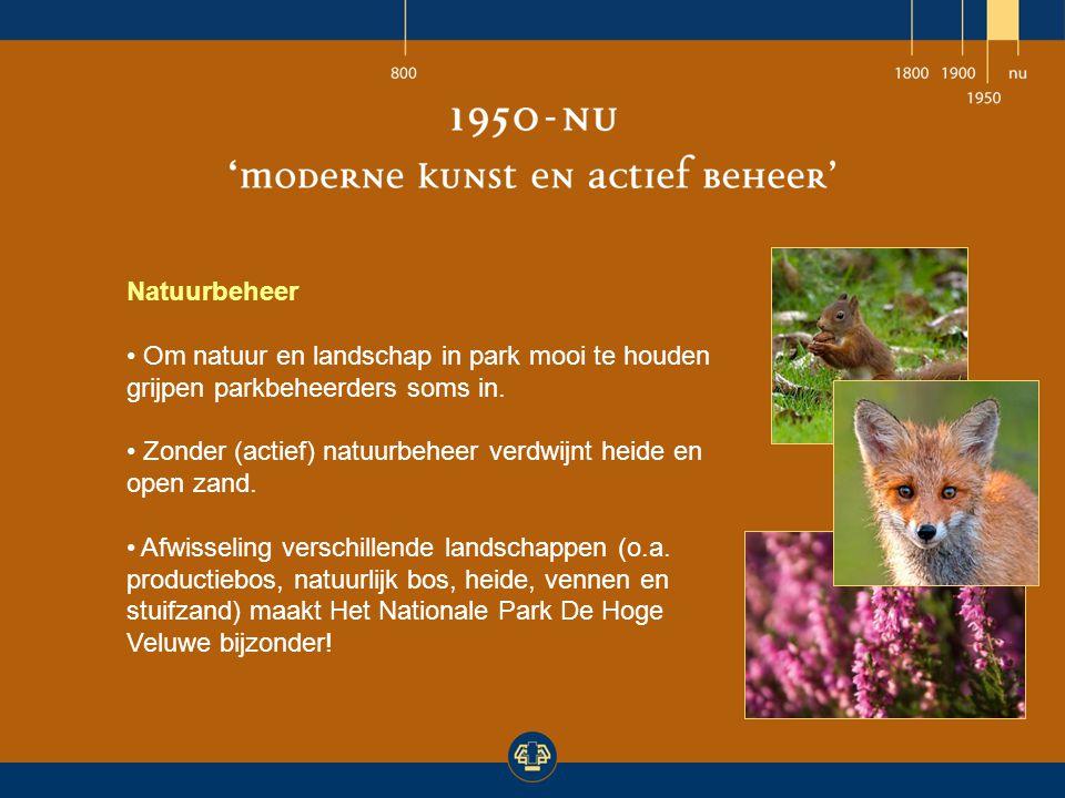 Natuurbeheer Om natuur en landschap in park mooi te houden grijpen parkbeheerders soms in.