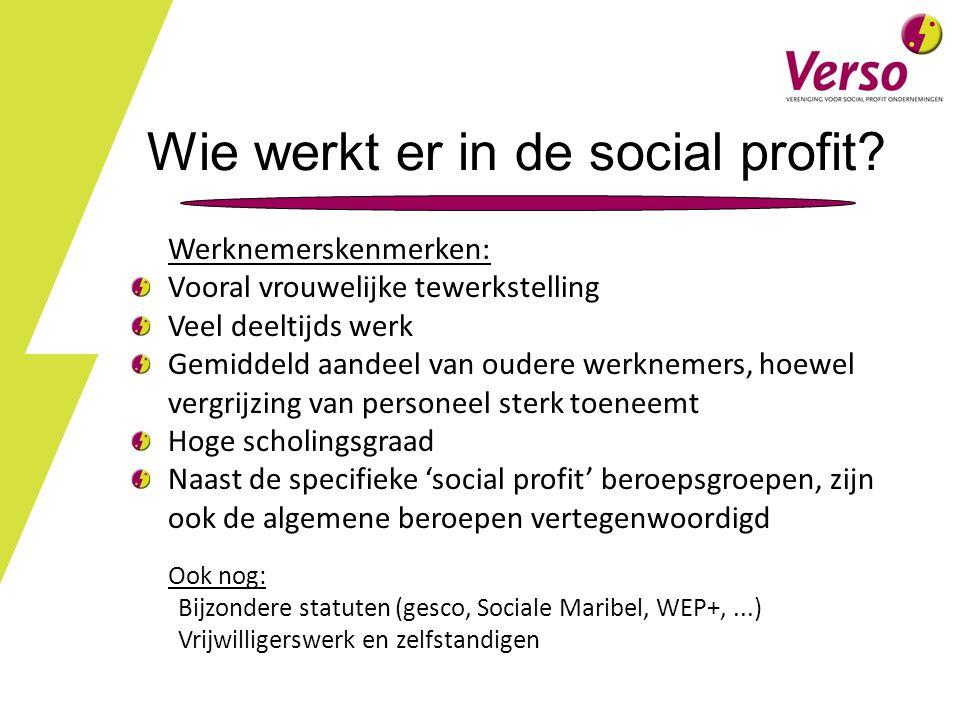 Wie werkt er in de social profit