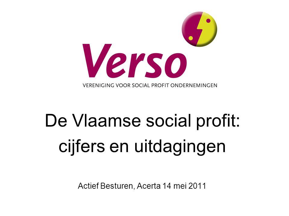 De Vlaamse social profit: cijfers en uitdagingen