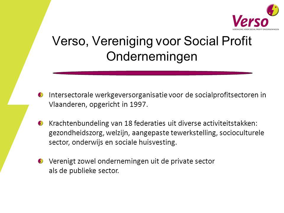 Verso, Vereniging voor Social Profit Ondernemingen