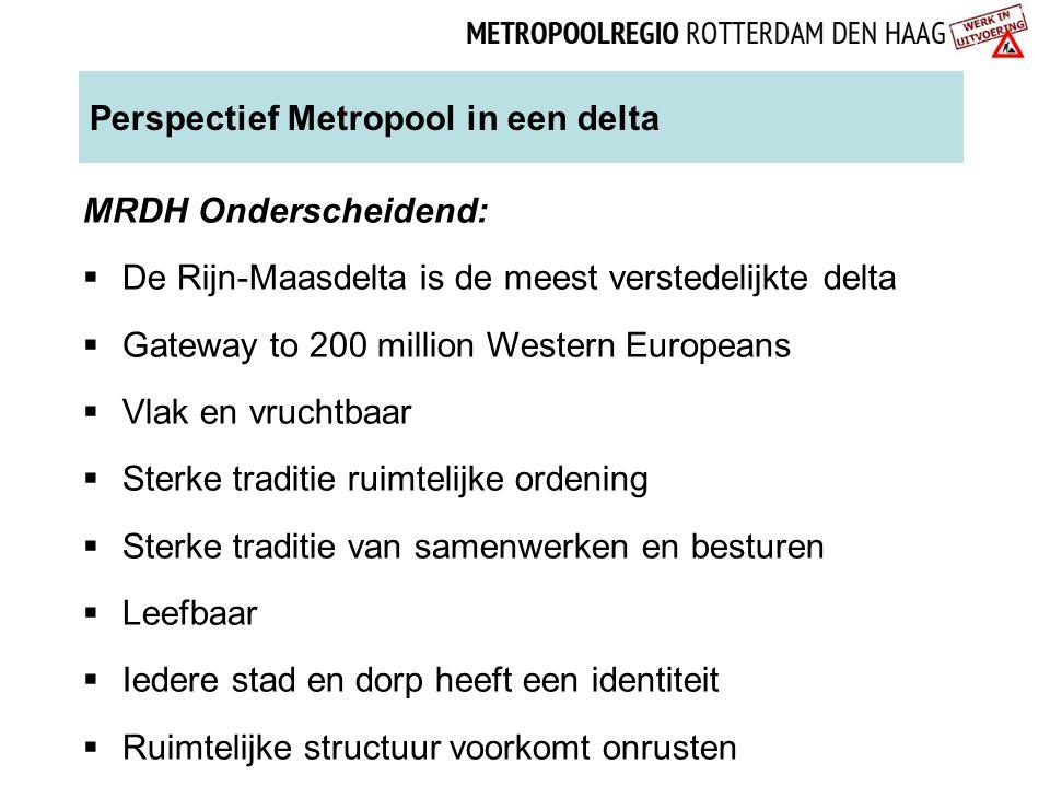 Perspectief Metropool in een delta