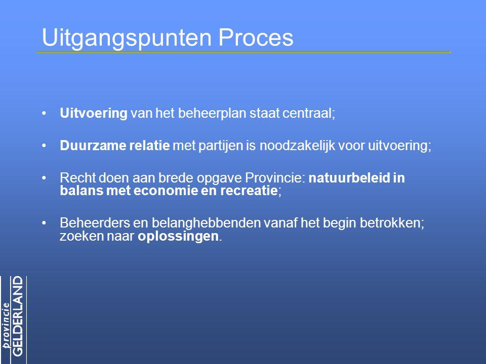 Uitgangspunten Proces