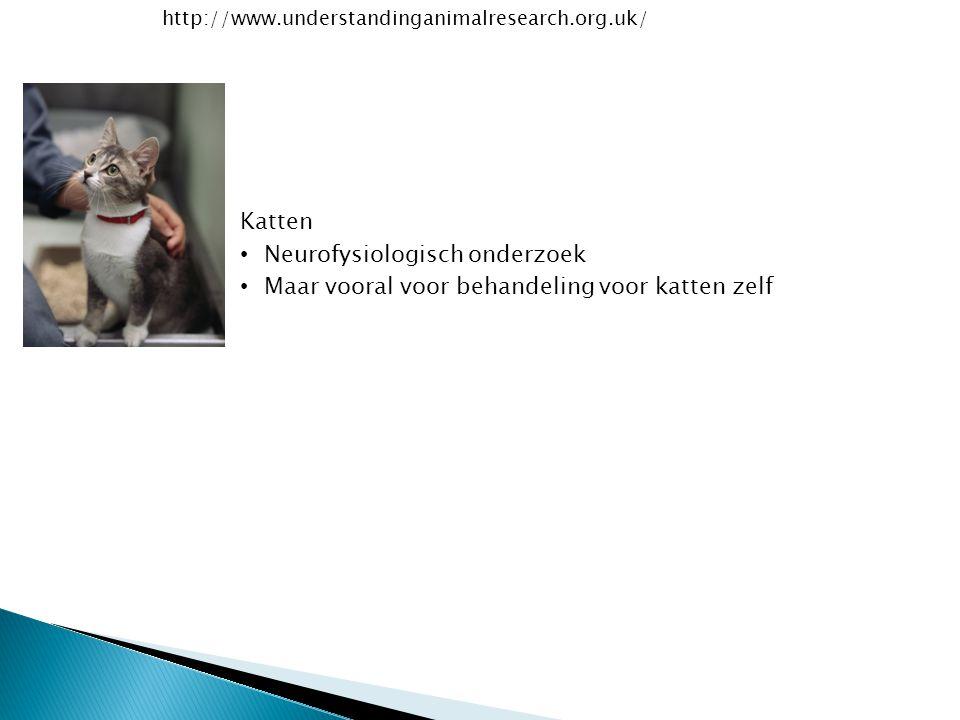 Neurofysiologisch onderzoek