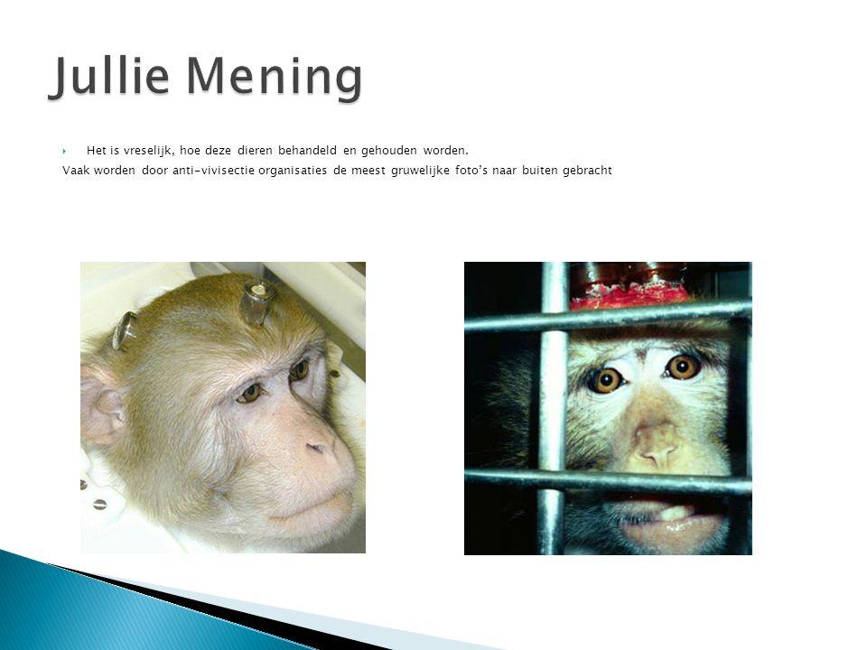 Jullie Mening Het is vreselijk, hoe deze dieren behandeld en gehouden worden.