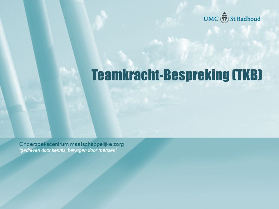 Teamkracht-Bespreking (TKB)