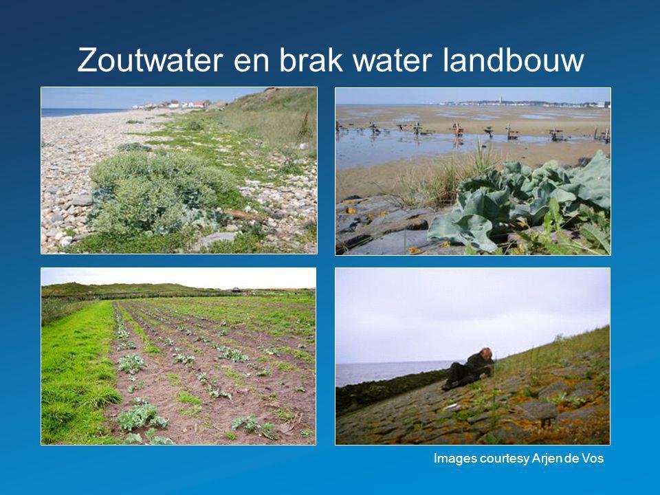 Zoutwater en brak water landbouw