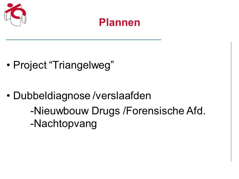 Plannen Project Triangelweg Dubbeldiagnose /verslaafden.