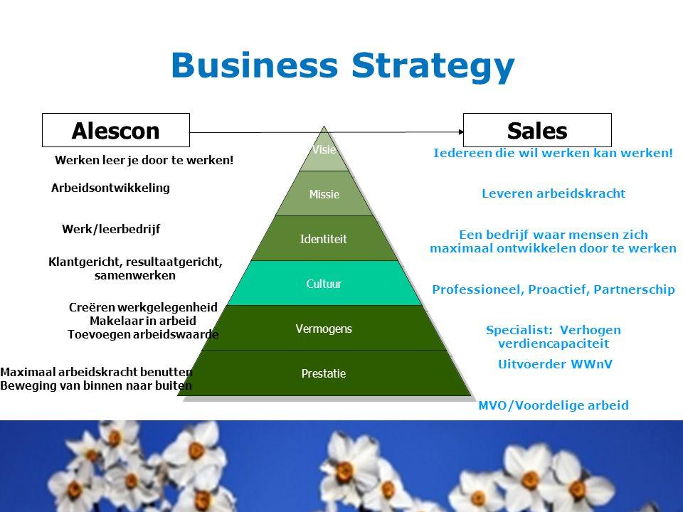 Business Strategy Alescon Sales Iedereen die wil werken kan werken!