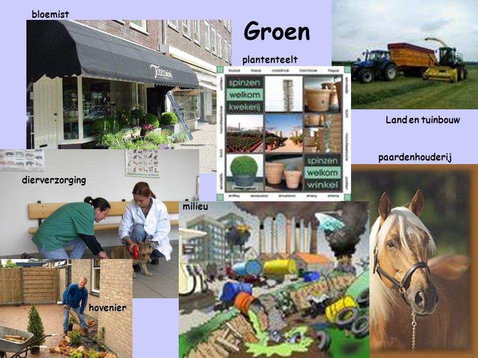 Groen bloemist plantenteelt Land en tuinbouw paardenhouderij