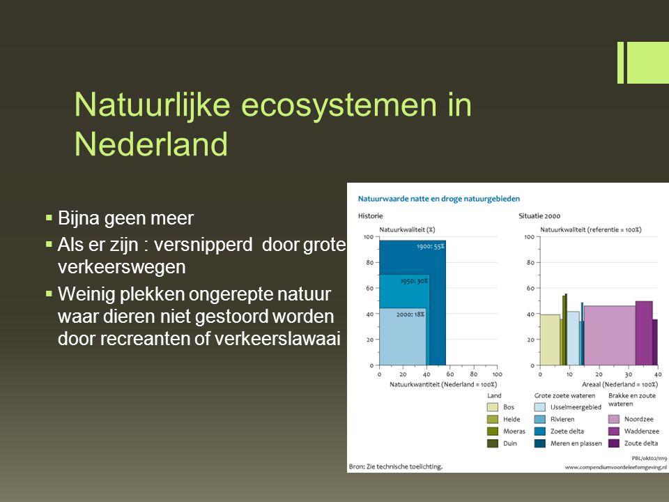 Natuurlijke ecosystemen in Nederland