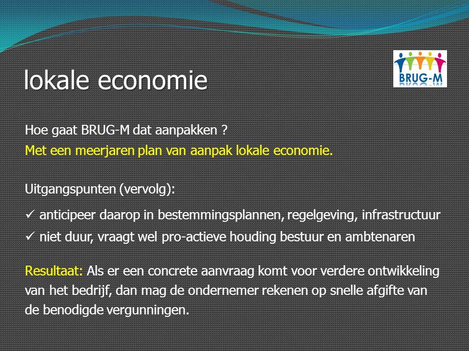 lokale economie Hoe gaat BRUG-M dat aanpakken