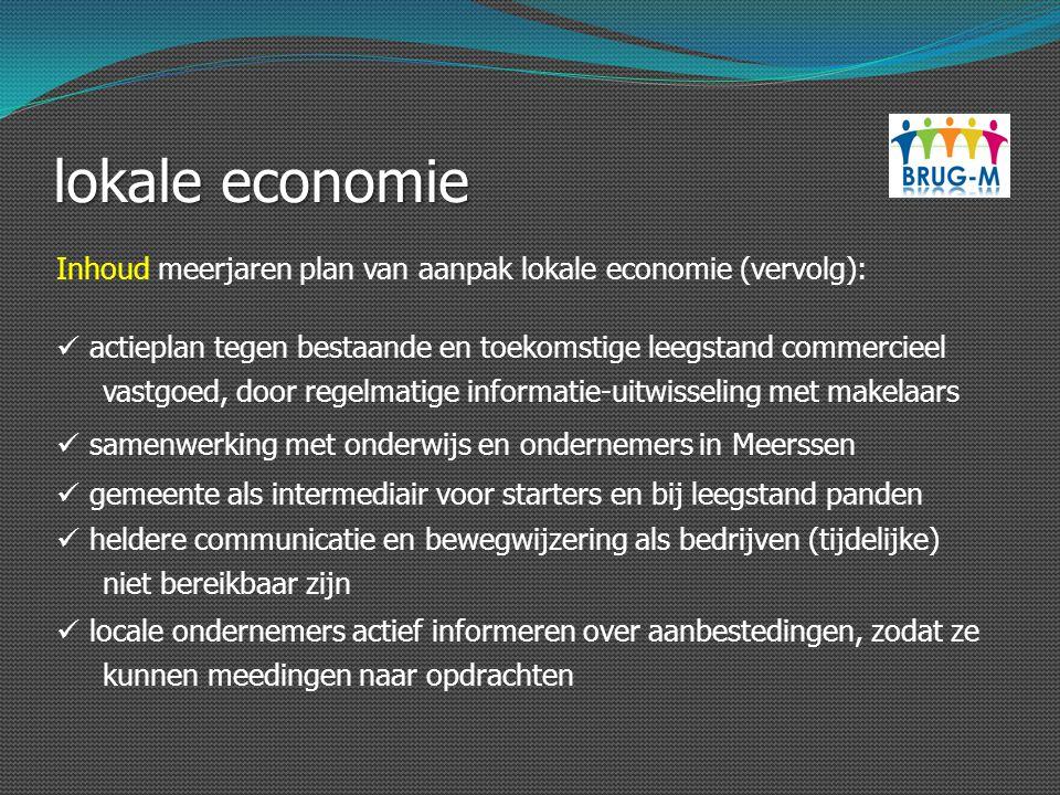lokale economie Inhoud meerjaren plan van aanpak lokale economie (vervolg): actieplan tegen bestaande en toekomstige leegstand commercieel.