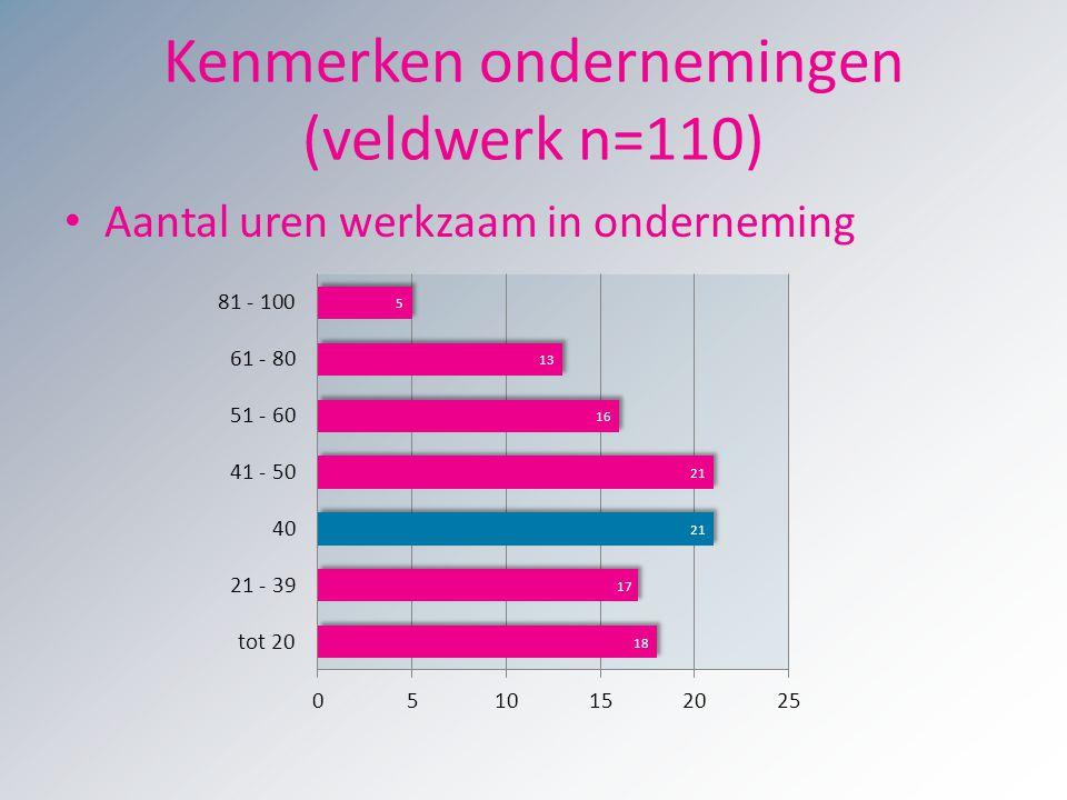 Kenmerken ondernemingen (veldwerk n=110)