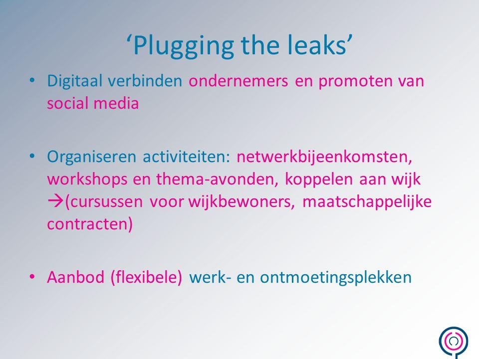 'Plugging the leaks' Digitaal verbinden ondernemers en promoten van social media.