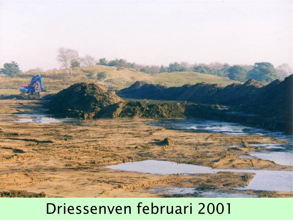 Driessenven februari 2001