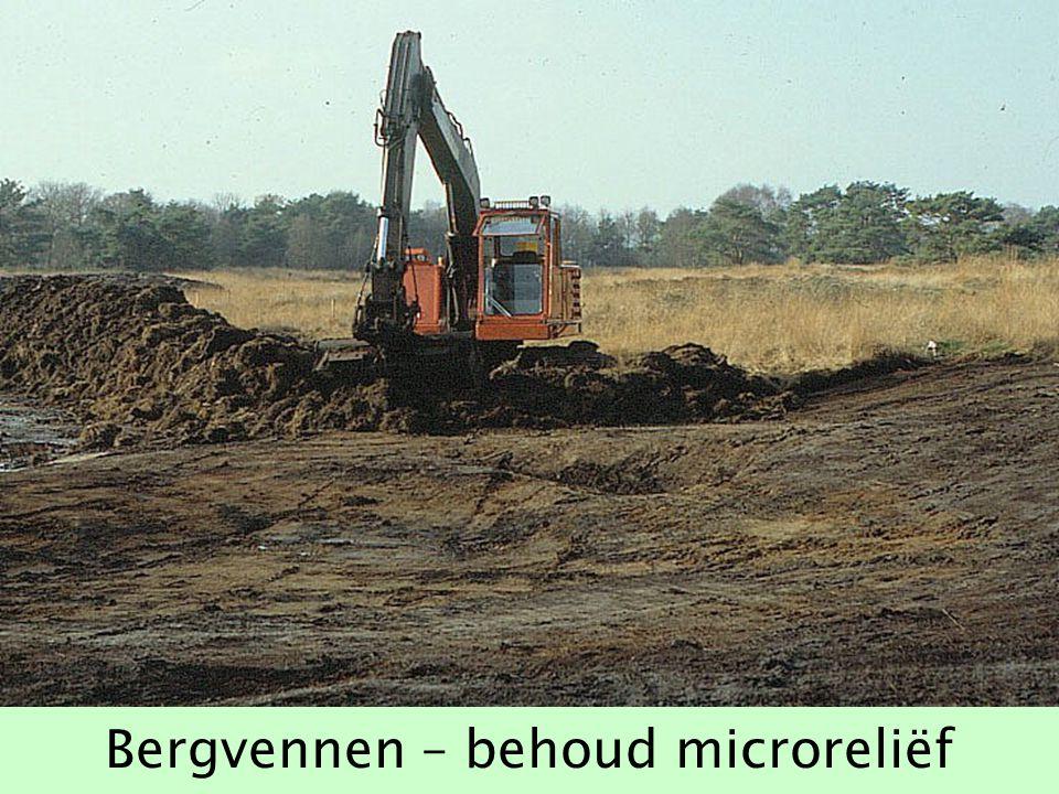 Bergvennen – behoud microreliëf