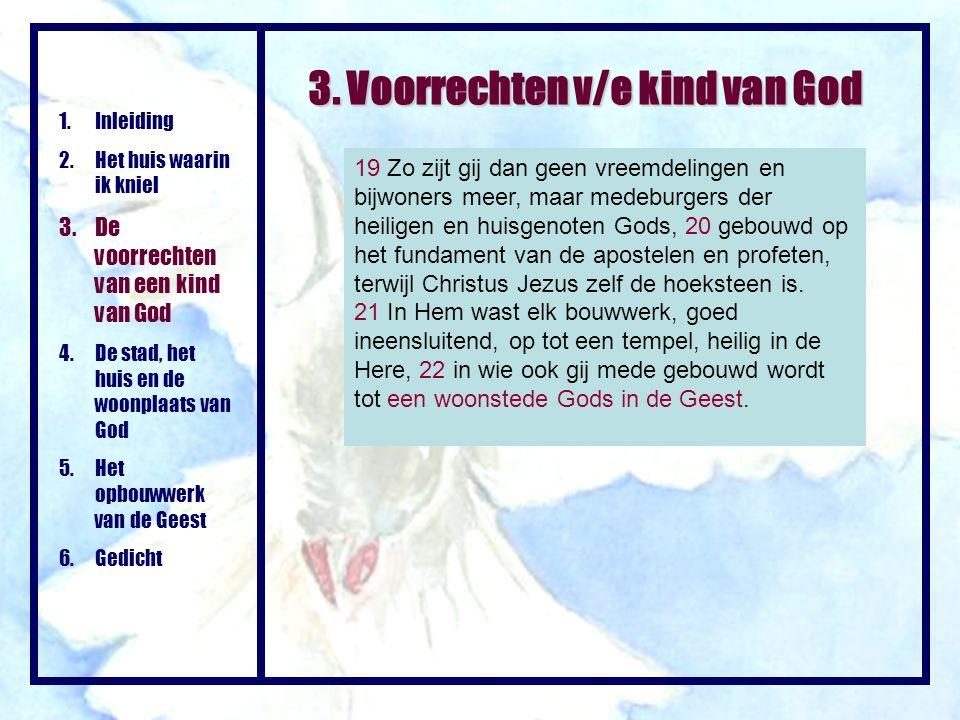 3. Voorrechten v/e kind van God