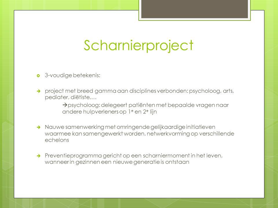 Scharnierproject 3-voudige betekenis: