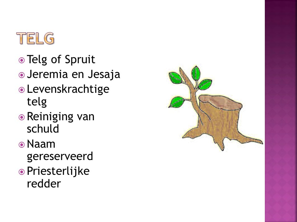 Telg Telg of Spruit Jeremia en Jesaja Levenskrachtige telg