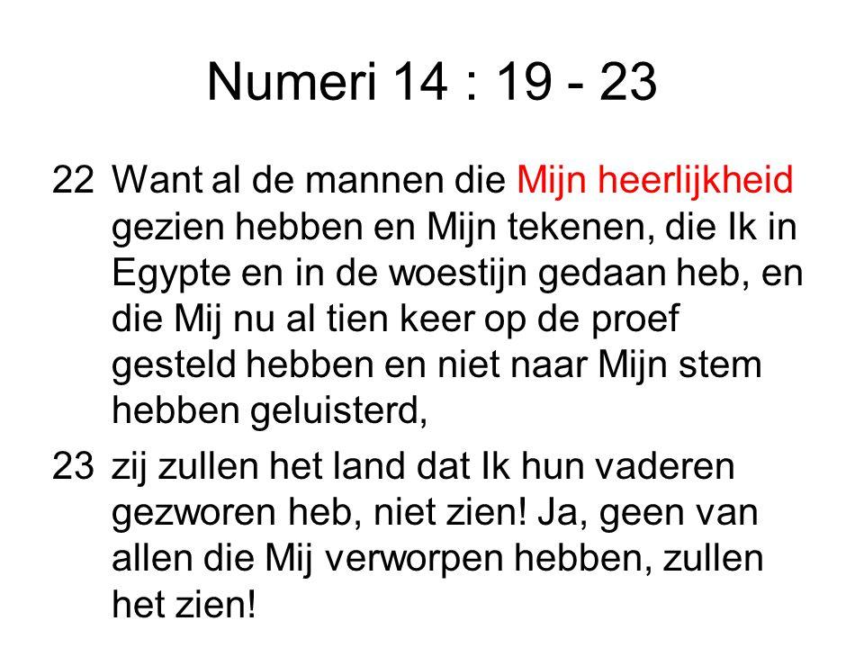 Numeri 14 : 19 - 23