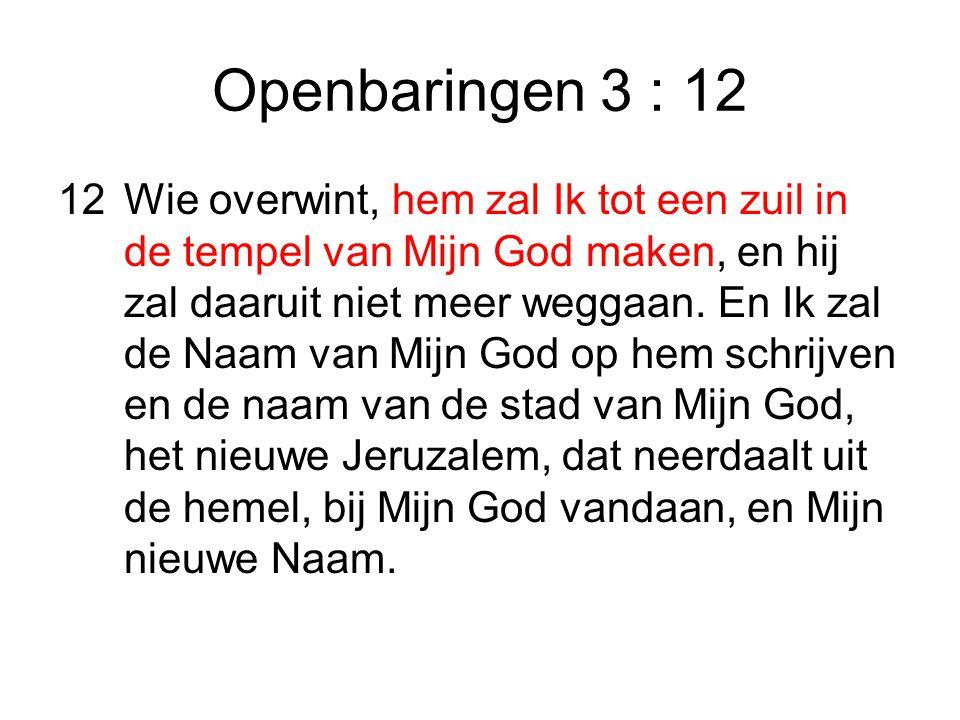 Openbaringen 3 : 12