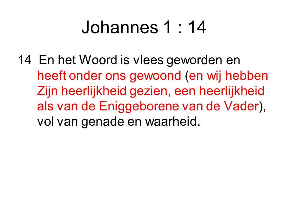Johannes 1 : 14