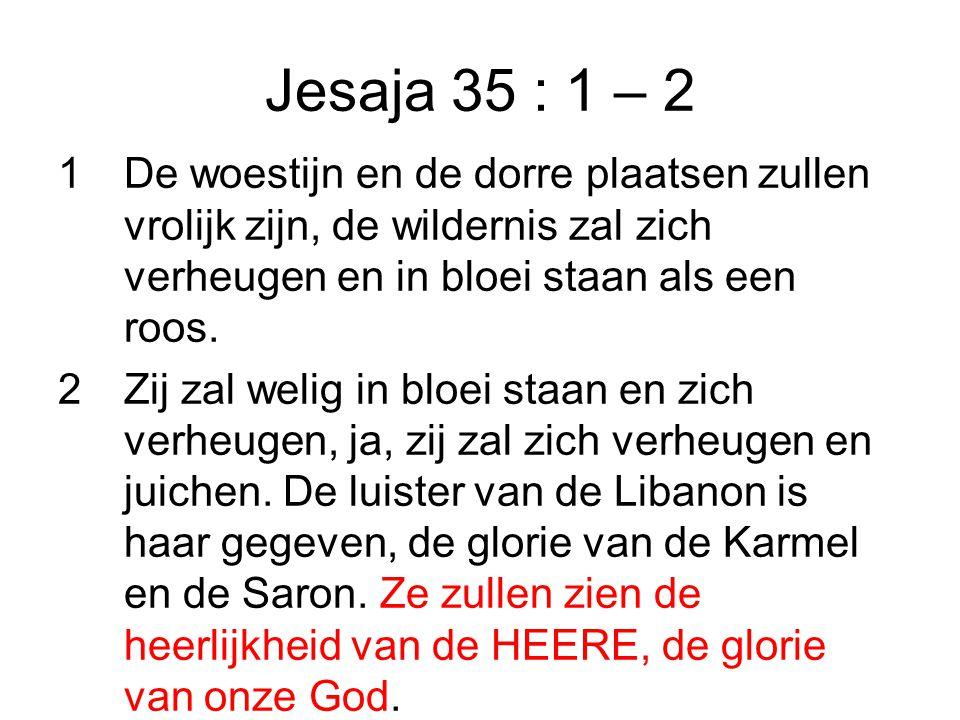 Jesaja 35 : 1 – 2 1 De woestijn en de dorre plaatsen zullen vrolijk zijn, de wildernis zal zich verheugen en in bloei staan als een roos.