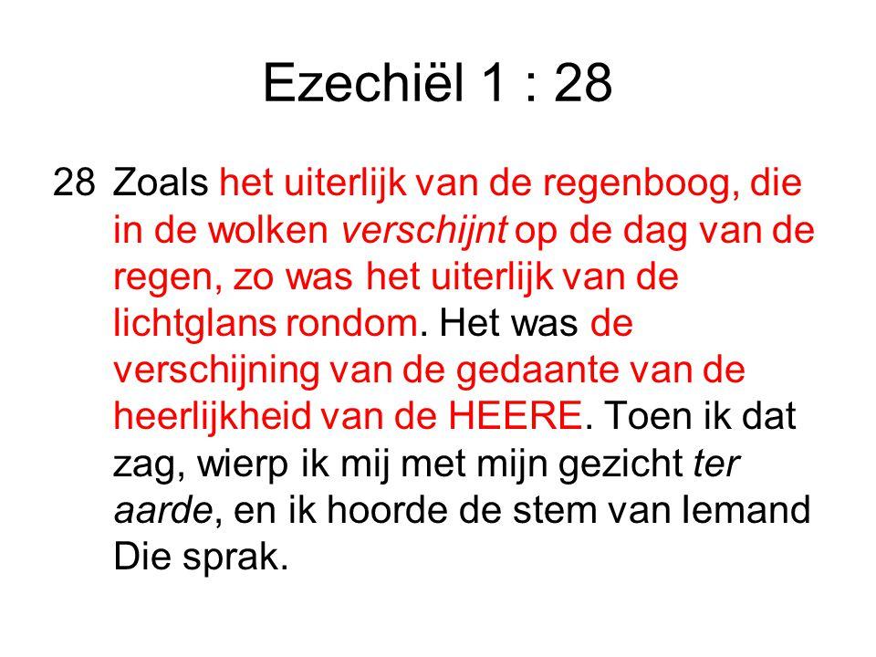 Ezechiël 1 : 28