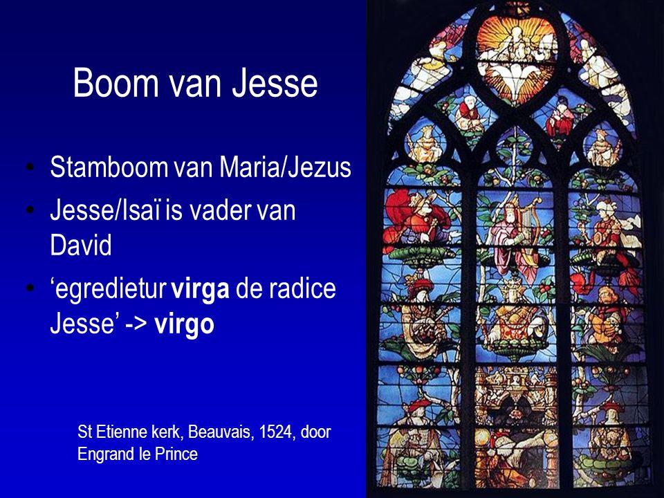 Boom van Jesse Stamboom van Maria/Jezus Jesse/Isaï is vader van David