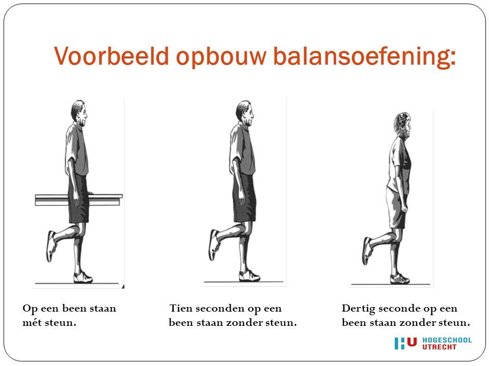 Voorbeeld opbouw balansoefening: