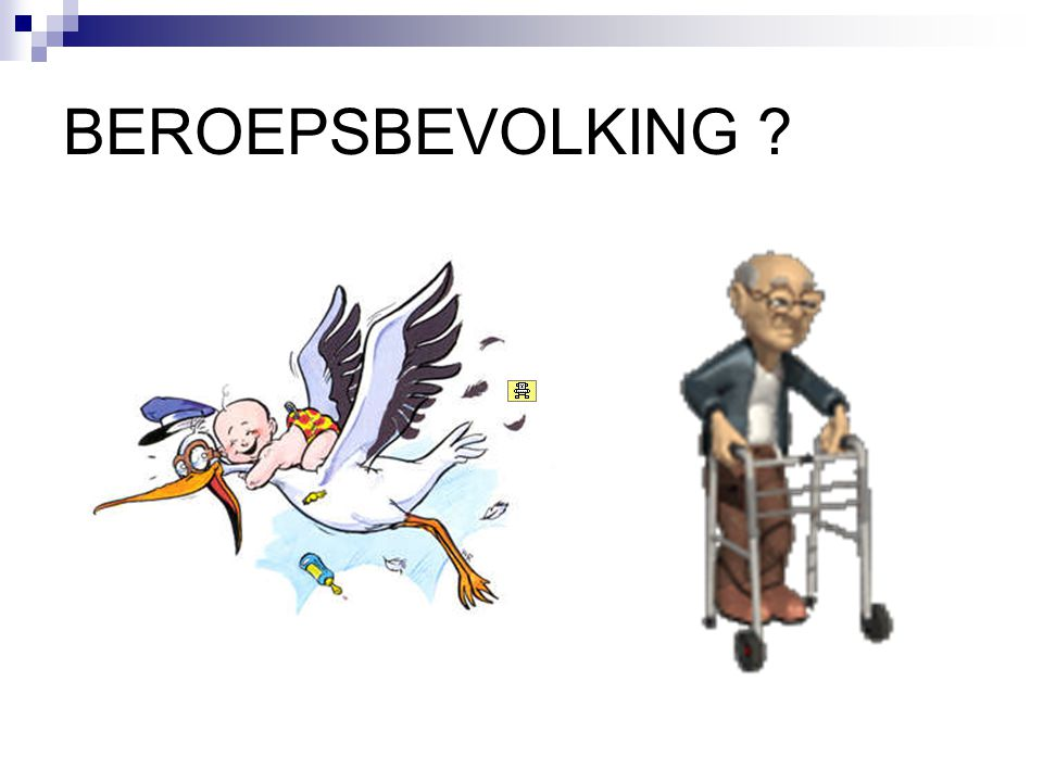 BEROEPSBEVOLKING