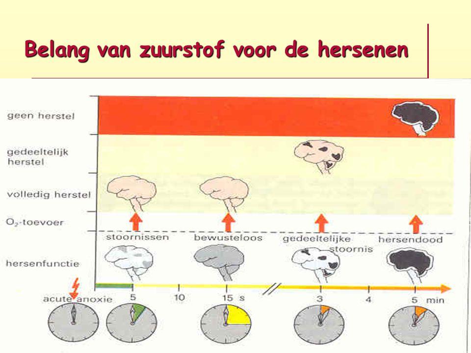 Belang van zuurstof voor de hersenen