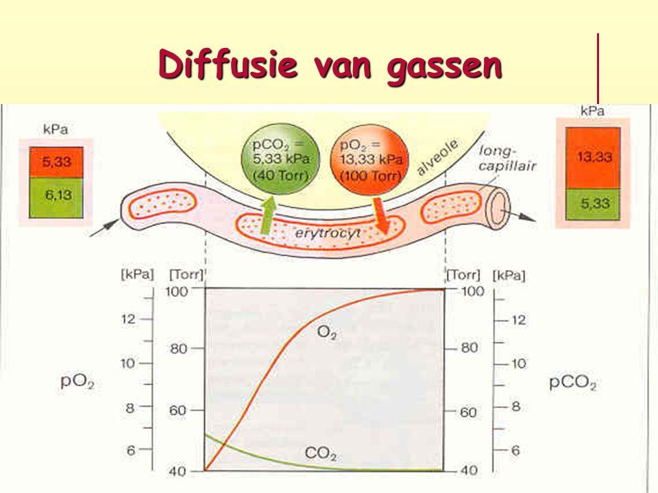 Diffusie van gassen