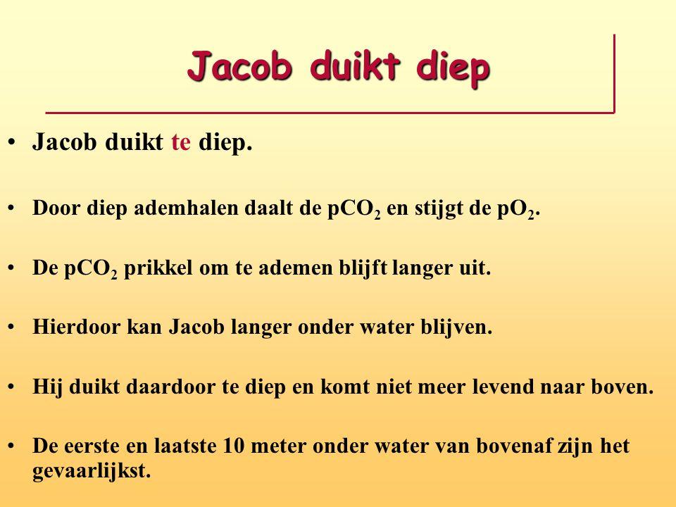 Jacob duikt diep Jacob duikt te diep.