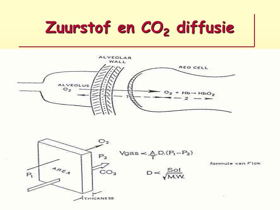 Zuurstof en CO2 diffusie