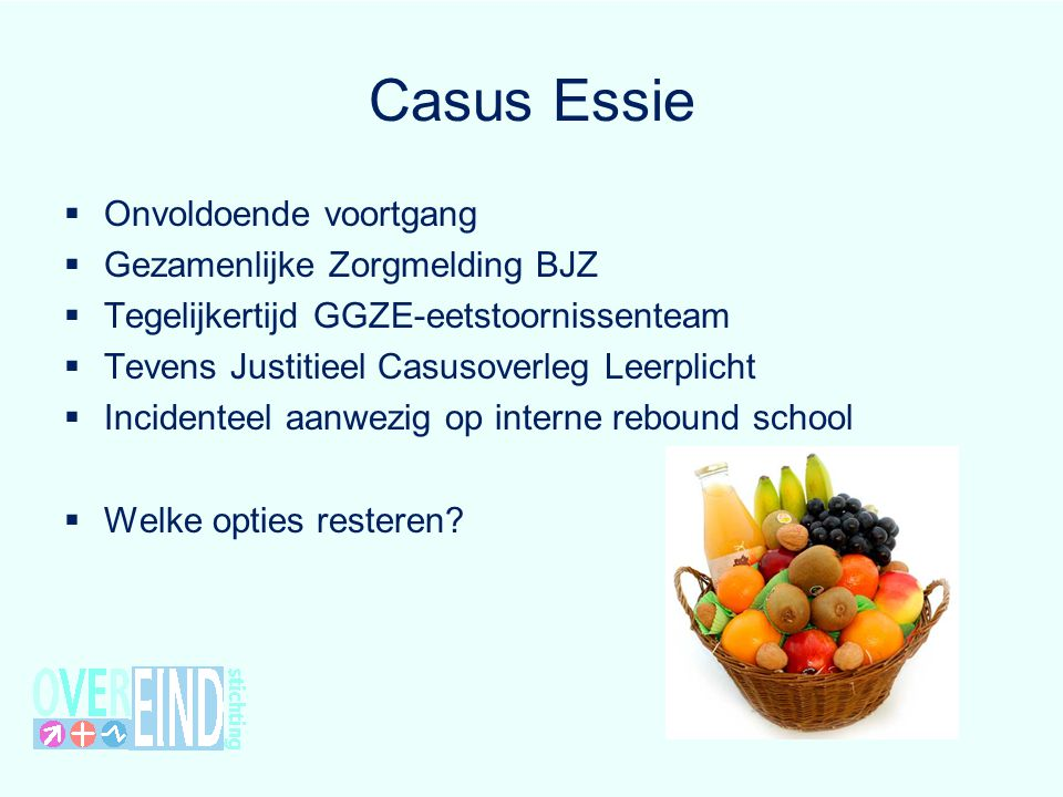 Casus Essie Onvoldoende voortgang Gezamenlijke Zorgmelding BJZ