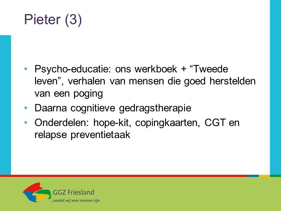 Pieter (3) Psycho-educatie: ons werkboek + Tweede leven , verhalen van mensen die goed herstelden van een poging.