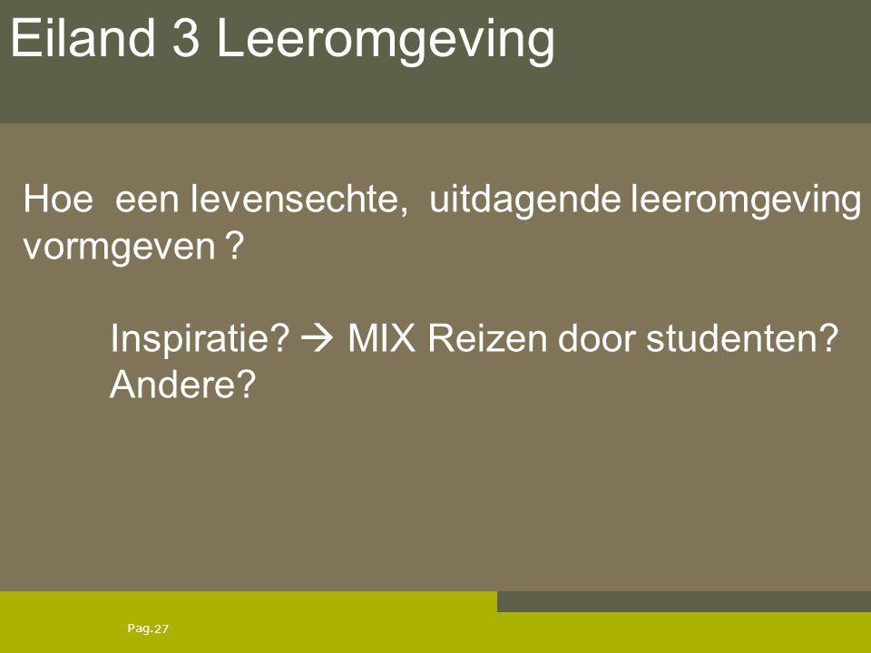 Eiland 3 Leeromgeving Hoe een levensechte, uitdagende leeromgeving vormgeven .