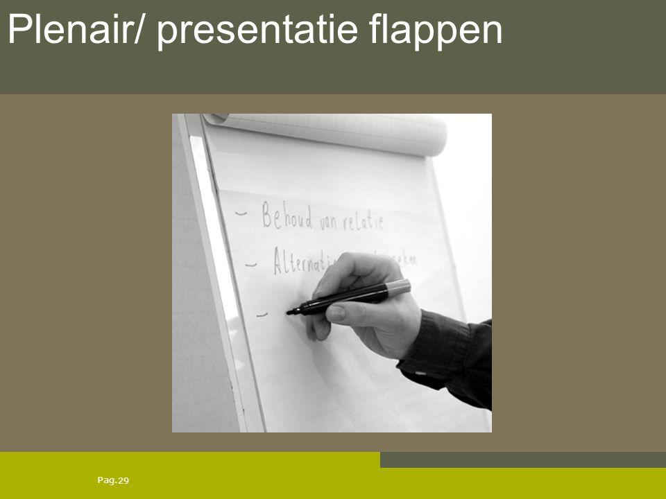 Plenair/ presentatie flappen