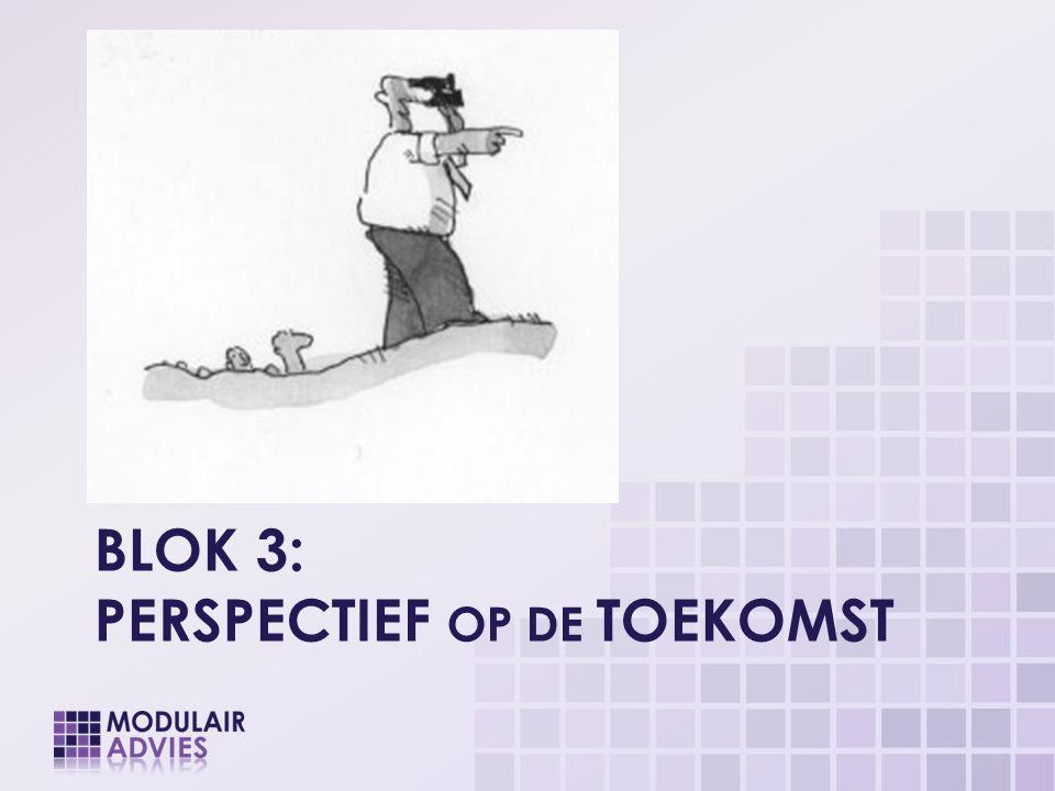 Blok 3: Perspectief op de Toekomst