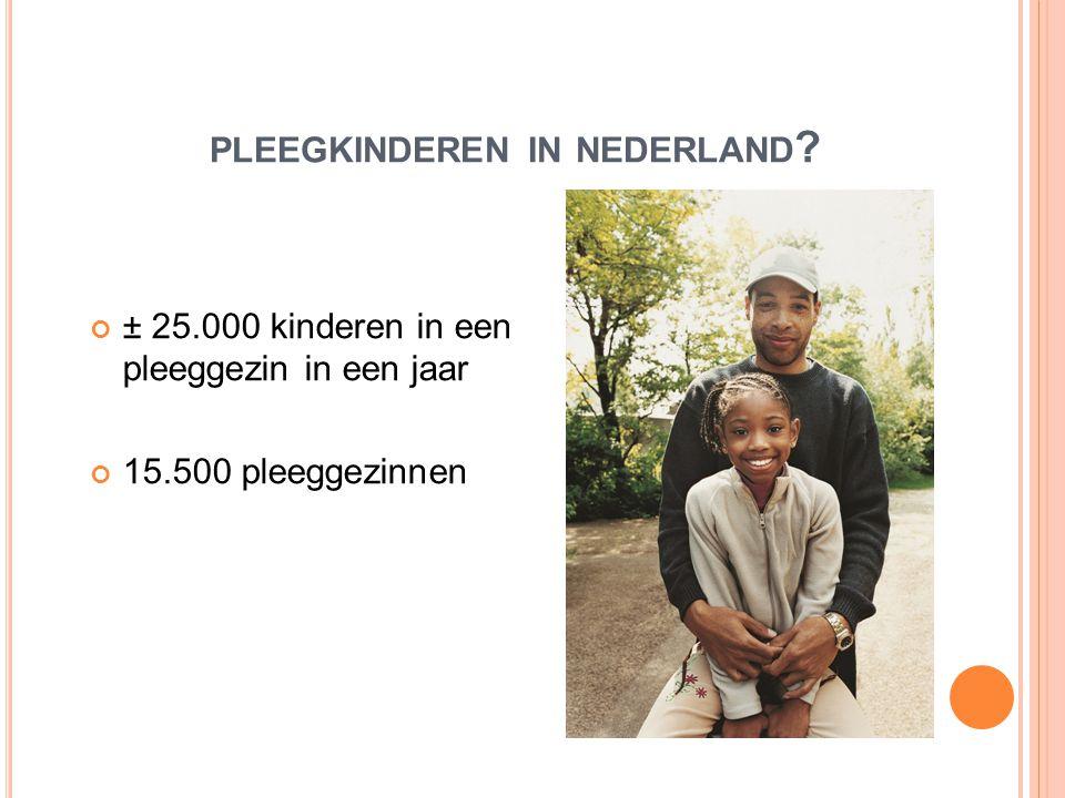 pleegkinderen in nederland