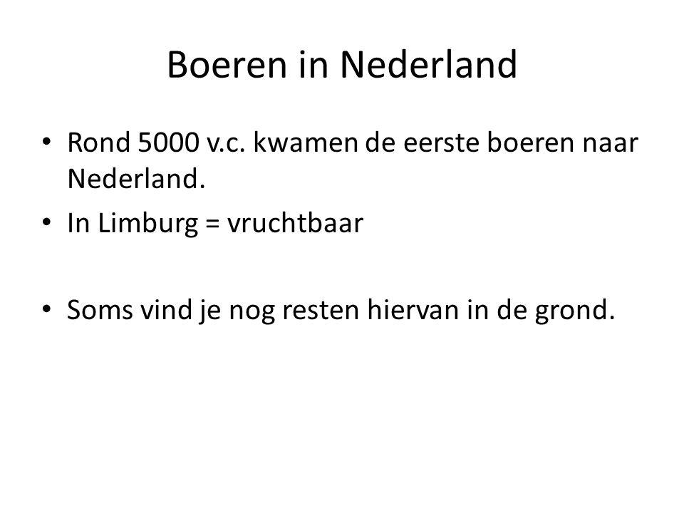 Boeren in Nederland Rond 5000 v.c. kwamen de eerste boeren naar Nederland. In Limburg = vruchtbaar.