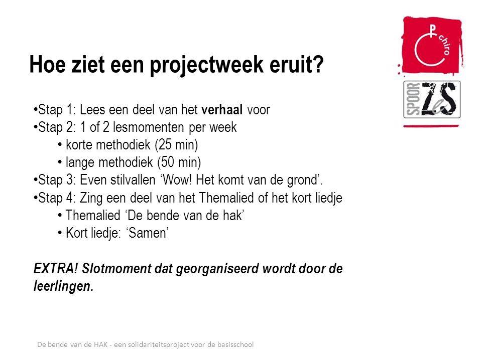 Hoe ziet een projectweek eruit