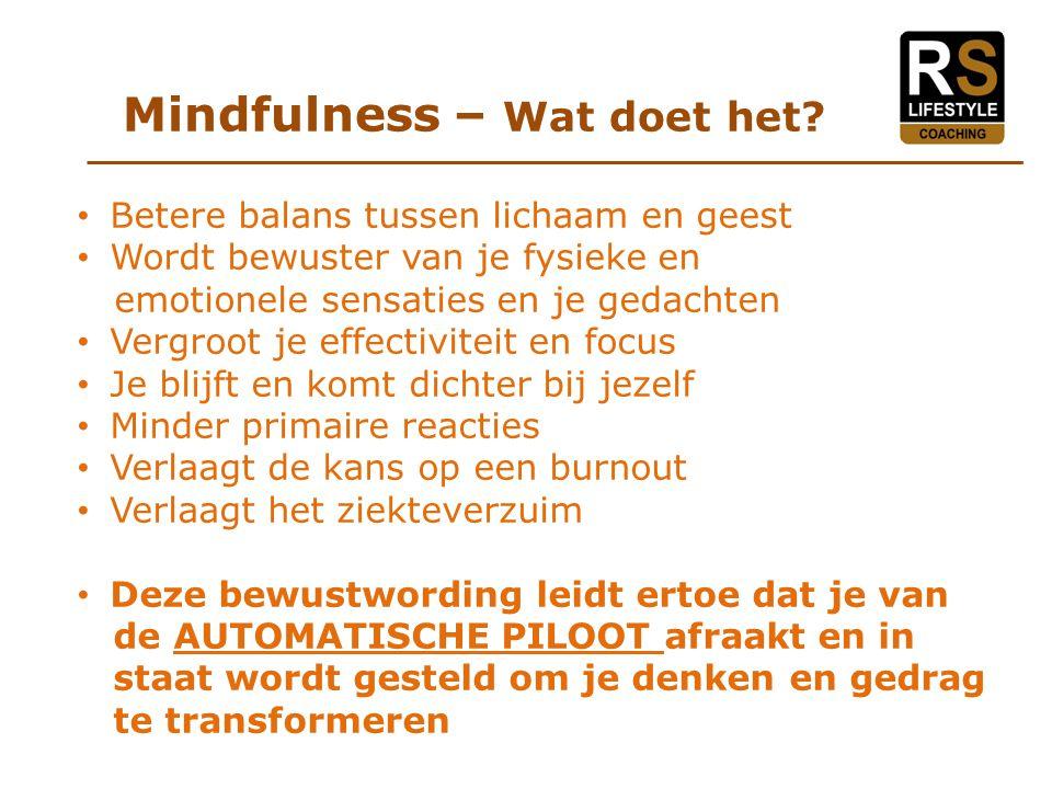 Mindfulness – Wat doet het