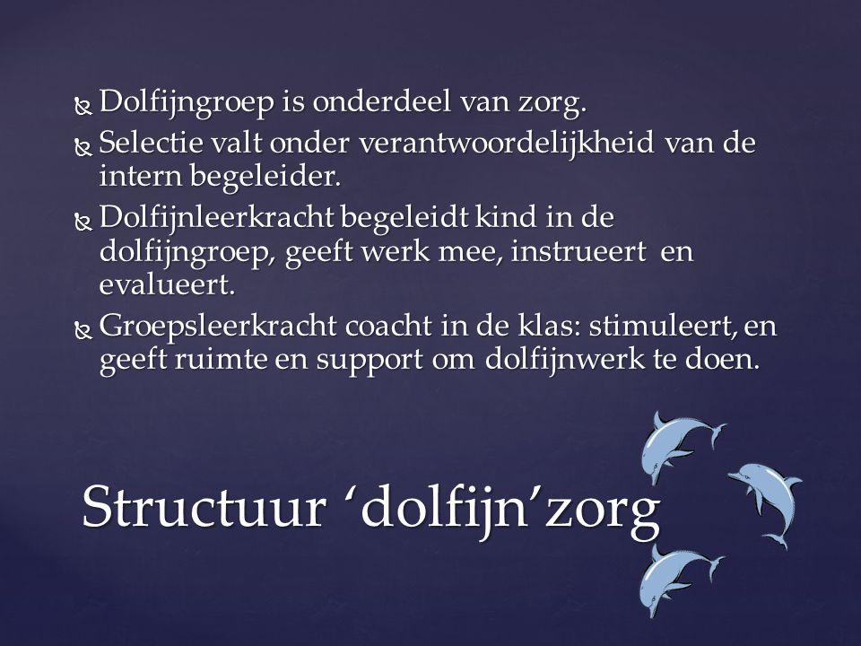 Structuur 'dolfijn'zorg