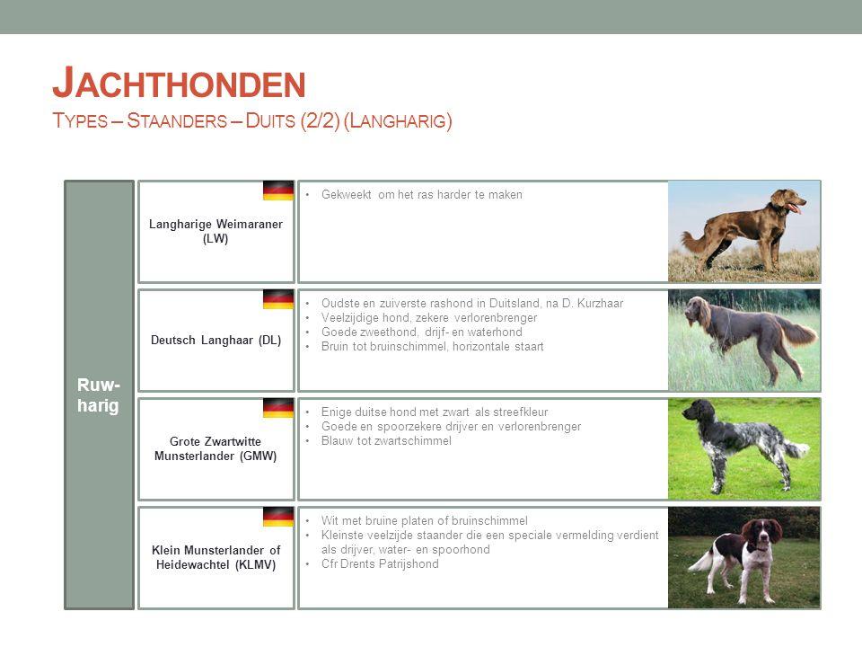 Jachthonden Types – Staanders – Duits (2/2) (Langharig)