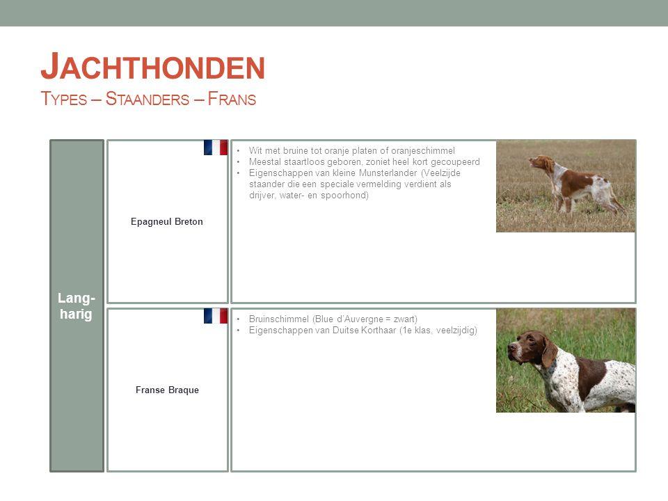 Jachthonden Types – Staanders – Frans